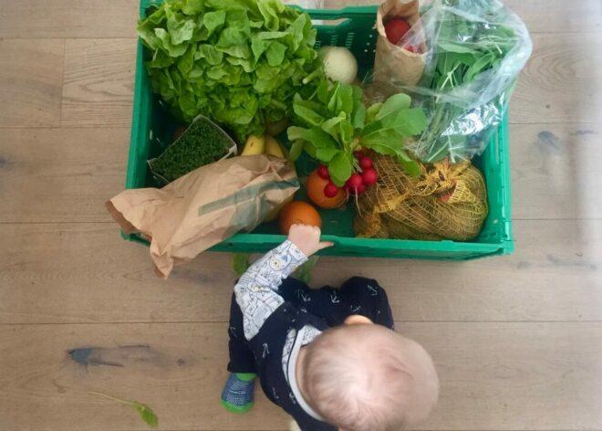 Lebensmittel Biokiste ins Haus