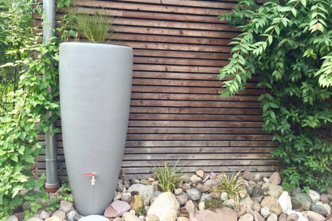 Regentonne Bepflanzen