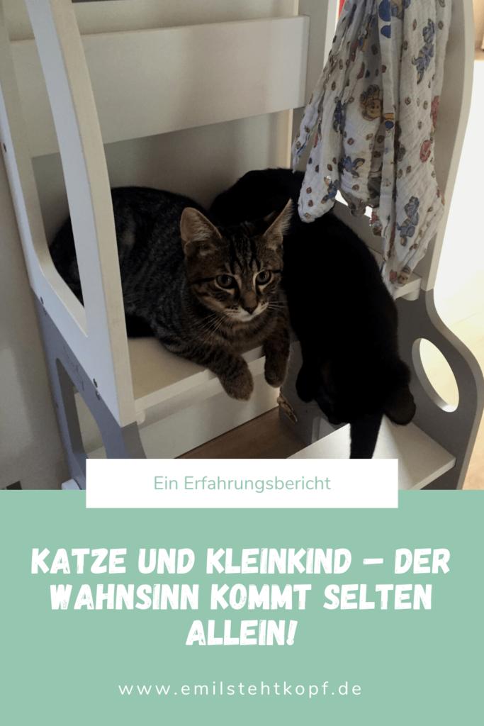 Katzen und Kleinkinder unter einem Dach