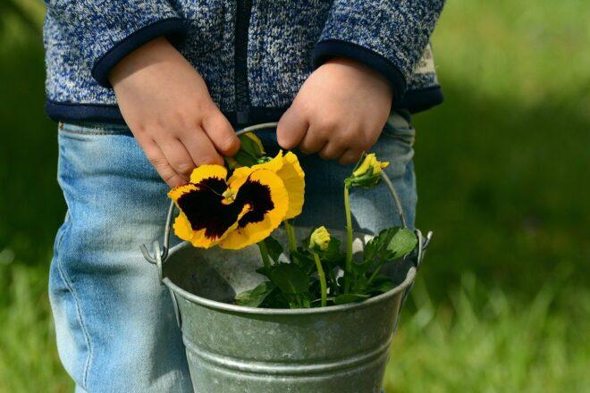 Garten für Kinder gestalten. Ein kleines Gartenparadies für Entdecker.